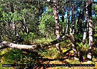 Licht und Schatten - Herbst im Südschwarzwald (Wandkalender 2019 DIN A2 quer) - Produktdetailbild 8