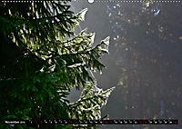 Licht und Schatten - Herbst im Südschwarzwald (Wandkalender 2019 DIN A2 quer) - Produktdetailbild 11