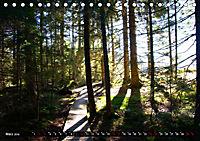 Licht und Schatten - Herbst im Südschwarzwald (Tischkalender 2019 DIN A5 quer) - Produktdetailbild 3