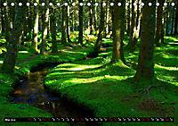 Licht und Schatten - Herbst im Südschwarzwald (Tischkalender 2019 DIN A5 quer) - Produktdetailbild 5
