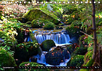 Licht und Schatten - Herbst im Südschwarzwald (Tischkalender 2019 DIN A5 quer) - Produktdetailbild 12