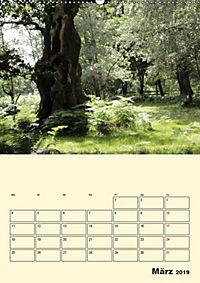 Licht und Schattiges (Wandkalender 2019 DIN A2 hoch) - Produktdetailbild 3