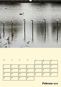 Licht und Schattiges (Wandkalender 2019 DIN A2 hoch) - Produktdetailbild 2