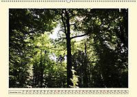 Licht und Schattiges (Wandkalender 2019 DIN A2 quer) - Produktdetailbild 11