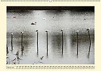 Licht und Schattiges (Wandkalender 2019 DIN A2 quer) - Produktdetailbild 2
