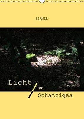 Licht und Schattiges (Wandkalender 2019 DIN A3 hoch), Angelika keller