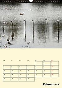 Licht und Schattiges (Wandkalender 2019 DIN A3 hoch) - Produktdetailbild 2