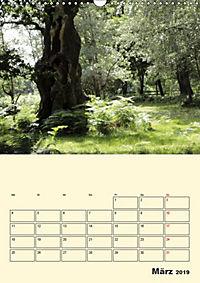 Licht und Schattiges (Wandkalender 2019 DIN A3 hoch) - Produktdetailbild 3
