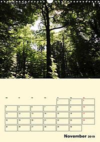 Licht und Schattiges (Wandkalender 2019 DIN A3 hoch) - Produktdetailbild 11