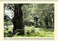 Licht und Schattiges (Wandkalender 2019 DIN A3 quer) - Produktdetailbild 3