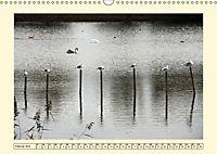Licht und Schattiges (Wandkalender 2019 DIN A3 quer) - Produktdetailbild 2