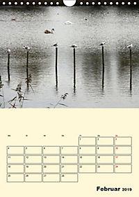 Licht und Schattiges (Wandkalender 2019 DIN A4 hoch) - Produktdetailbild 2