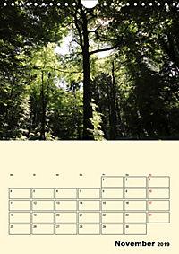 Licht und Schattiges (Wandkalender 2019 DIN A4 hoch) - Produktdetailbild 11