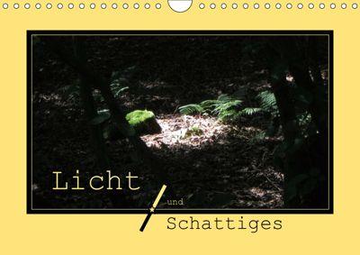 Licht und Schattiges (Wandkalender 2019 DIN A4 quer), Angelika keller