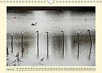 Licht und Schattiges (Wandkalender 2019 DIN A4 quer) - Produktdetailbild 2