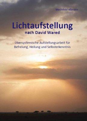 Lichtaufstellung Band 2 - Aßmann Mechthild pdf epub
