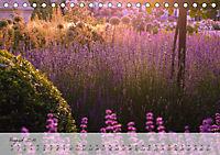 Lichtdurchflutet (Tischkalender 2019 DIN A5 quer) - Produktdetailbild 8