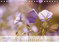 Lichtdurchflutet (Tischkalender 2019 DIN A5 quer) - Produktdetailbild 2