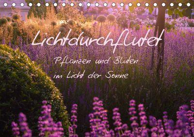 Lichtdurchflutet (Tischkalender 2019 DIN A5 quer), Ilse Kunz