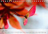 Lichtdurchflutet (Tischkalender 2019 DIN A5 quer) - Produktdetailbild 6