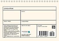 Lichtdurchflutet (Tischkalender 2019 DIN A5 quer) - Produktdetailbild 13