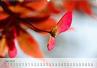 Lichtdurchflutet (Wandkalender 2019 DIN A2 quer) - Produktdetailbild 6
