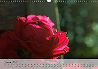 Lichtdurchflutet (Wandkalender 2019 DIN A3 quer) - Produktdetailbild 1