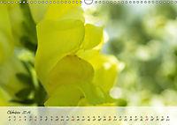 Lichtdurchflutet (Wandkalender 2019 DIN A3 quer) - Produktdetailbild 10