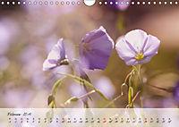 Lichtdurchflutet (Wandkalender 2019 DIN A4 quer) - Produktdetailbild 2