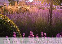 Lichtdurchflutet (Wandkalender 2019 DIN A4 quer) - Produktdetailbild 8