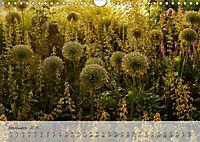 Lichtdurchflutet (Wandkalender 2019 DIN A4 quer) - Produktdetailbild 11