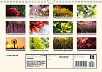 Lichtdurchflutet (Wandkalender 2019 DIN A4 quer) - Produktdetailbild 13