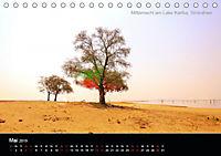 Lichtkunst - Weltreise Markante Bäume (Tischkalender 2019 DIN A5 quer) - Produktdetailbild 5