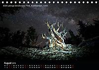Lichtkunst - Weltreise Markante Bäume (Tischkalender 2019 DIN A5 quer) - Produktdetailbild 8