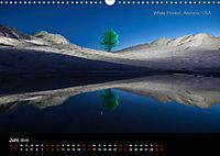 Lichtkunst - Weltreise Markante Bäume (Wandkalender 2019 DIN A3 quer) - Produktdetailbild 6