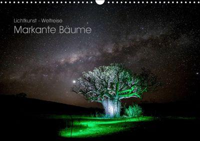 Lichtkunst - Weltreise Markante Bäume (Wandkalender 2019 DIN A3 quer), Gunnar Heilmann