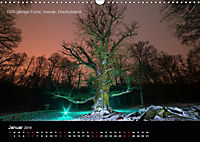Lichtkunst - Weltreise Markante Bäume (Wandkalender 2019 DIN A3 quer) - Produktdetailbild 1