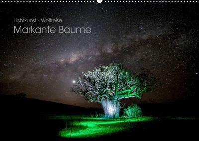 Lichtkunst - Weltreise Markante Bäume (Wandkalender 2019 DIN A2 quer), Gunnar Heilmann