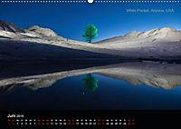 Lichtkunst - Weltreise Markante Bäume (Wandkalender 2019 DIN A2 quer) - Produktdetailbild 6