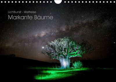 Lichtkunst - Weltreise Markante Bäume (Wandkalender 2019 DIN A4 quer), Gunnar Heilmann