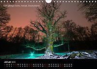 Lichtkunst - Weltreise Markante Bäume (Wandkalender 2019 DIN A4 quer) - Produktdetailbild 1
