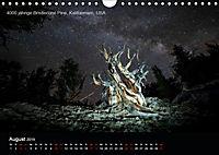 Lichtkunst - Weltreise Markante Bäume (Wandkalender 2019 DIN A4 quer) - Produktdetailbild 8
