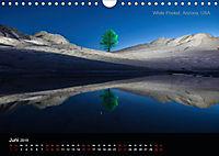 Lichtkunst - Weltreise Markante Bäume (Wandkalender 2019 DIN A4 quer) - Produktdetailbild 6
