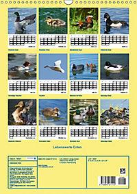 Liebenswerte Enten (Wandkalender 2019 DIN A3 hoch) - Produktdetailbild 13