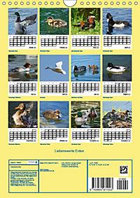 Liebenswerte Enten (Wandkalender 2019 DIN A4 hoch) - Produktdetailbild 13