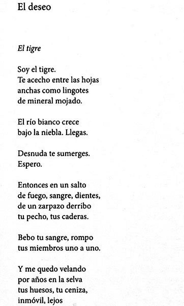 Liebesgedichte Buch Von Pablo Neruda Versandkostenfrei Bei