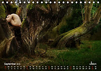 Lieblingsbäume - eins mit der Natur (Tischkalender 2019 DIN A5 quer) - Produktdetailbild 9