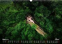 Lieblingsbäume - eins mit der Natur (Wandkalender 2019 DIN A3 quer) - Produktdetailbild 3