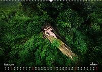 Lieblingsbäume - eins mit der Natur (Wandkalender 2019 DIN A2 quer) - Produktdetailbild 3