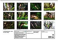 Lieblingsbäume - eins mit der Natur (Wandkalender 2019 DIN A2 quer) - Produktdetailbild 13